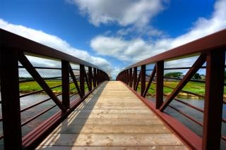pei country bridge   hdr  picture