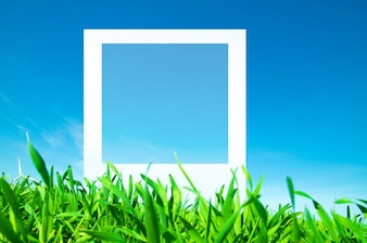 Photo frame on the grass