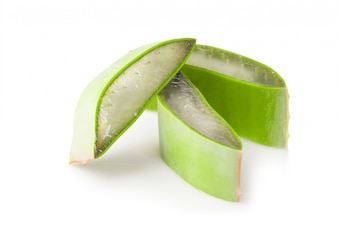Piece of leaf aloe vera