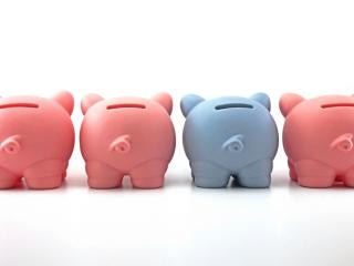 Piggy Bank, coin