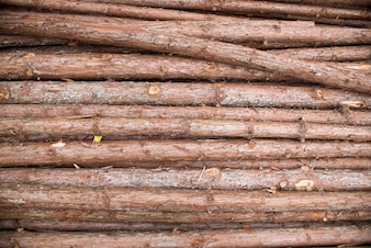 Pile of wooden twigs