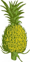 Pineapple in green and yellow tones