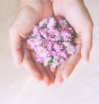Pink flowers in hands with retro filter effect