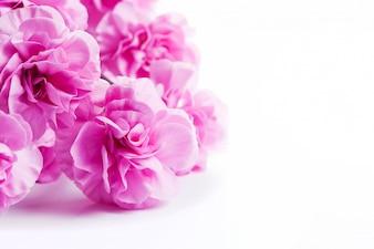 白いテーブルの上にピンクの花