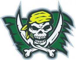 Pirate skull flash with bandana vector