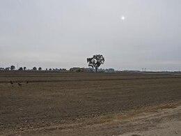 Plains on an Overcast Day