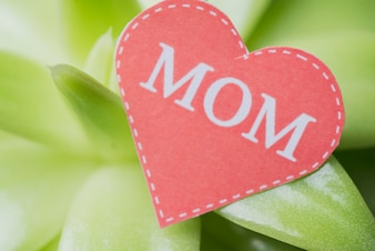 Plant background with paper heart for mother's day