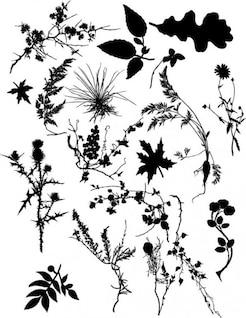 plant silhouettes vector set