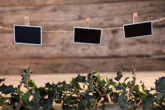 Plants with black photos hanging on a rope