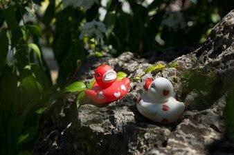 Plastic ducks having fun