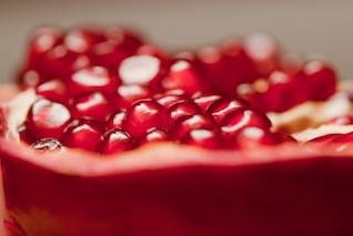 pomegranate  food