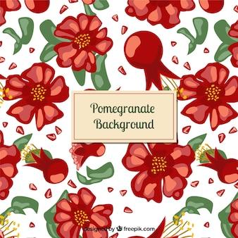 pomegranate background