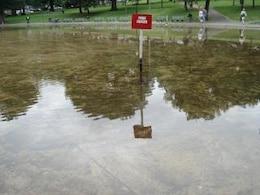 Pond, red