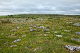 poulnabrone landscape   hdr  red