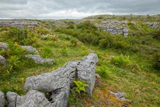poulnabrone landscape   hdr  stone