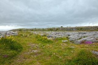 Poulnabrone landscape   hdr  grunged