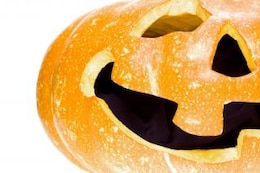 pumpkin, season