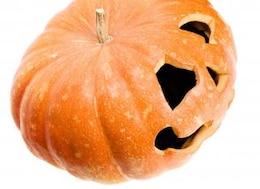 pumpkin  single