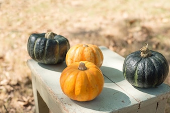 Pumpkins on wooden table outdoors