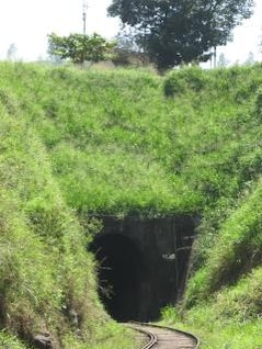 Railway Tunnel, nature