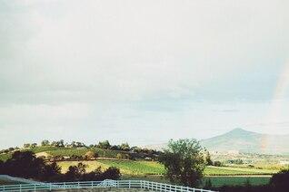 Rainbow over the vineyard