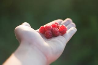 Raspberry  ripe