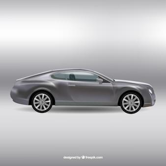Realistic grey car