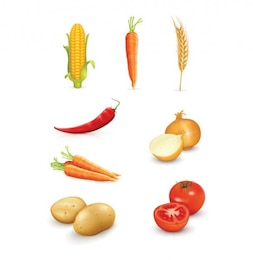 Realistic mixed vegetables vector graphics