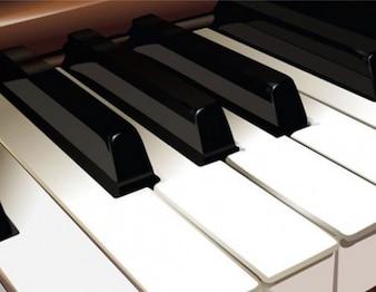 Realistic piano keyboard vector