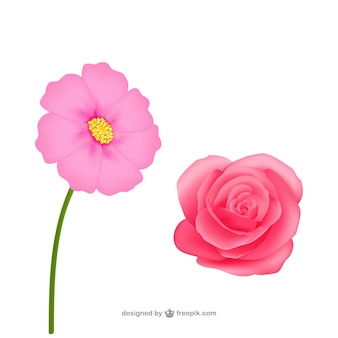 Realistic pink flowers