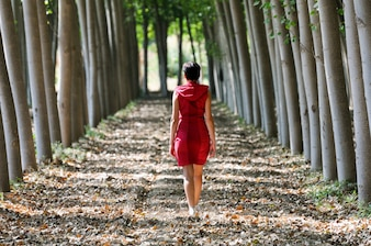 Rear view of woman walking among the trees