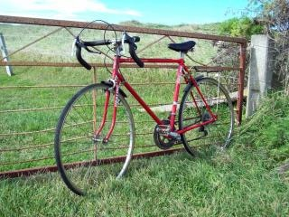 Red bike and Iron gate - Healing ten Spe