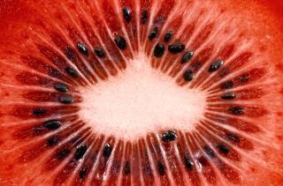 red kiwi slice macro