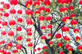 Red lanterns on a clear day