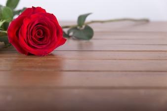 テーブルの上に赤いバラ