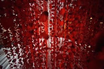 赤いバラの花びらとリボンが白い床にぶら下がっています