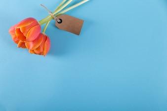 青い背景にタグ付きの赤いバラ