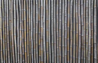 Reed wall
