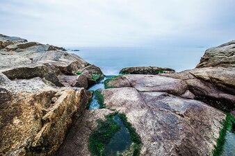 Reef sand coast exposed beautiful