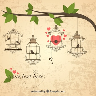 Retro bird cages hanging on a branch
