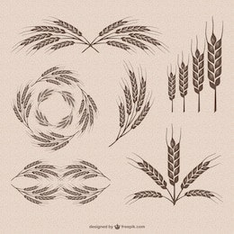 Retro wheat vector collection