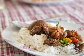Rice with Eggs and pork in brown sauce