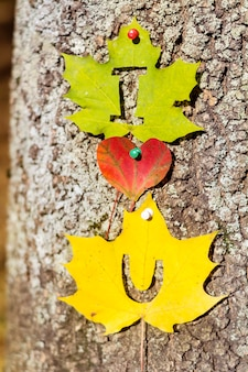 Romantic message with leaves