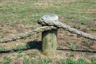 Rope & Stump
