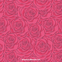 Roses pattern in hot pink tone