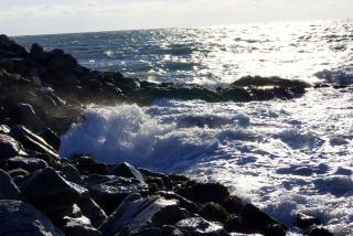 Rough Surf, wild