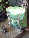 Rucksack - Backpack und Spangle Game Hen