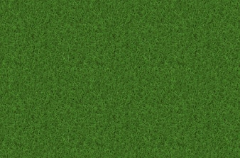Rush texture background grass pattern