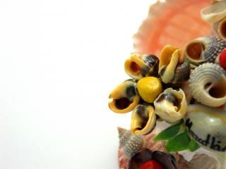 Sea-shell figure, sea