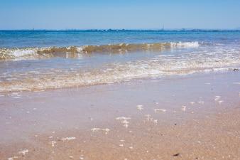Seascape: blue sky, ocean and beautiful beach.